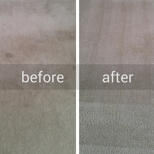 Newgen Restores Carpet Before and After